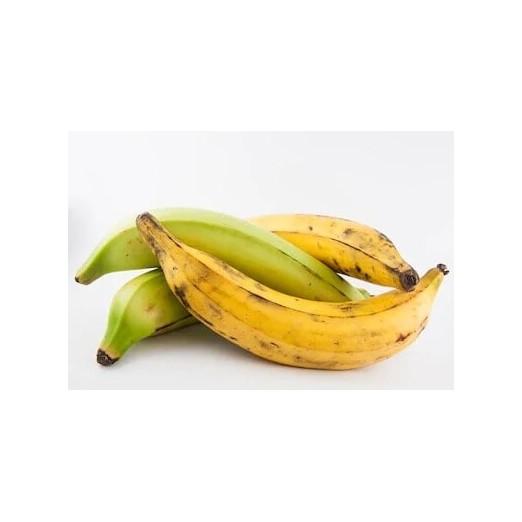 banane plantin isaimarket